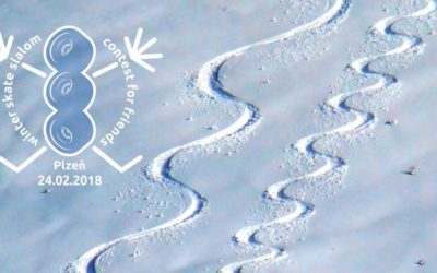 Winter Sk8slalom Contest for Friends 2018